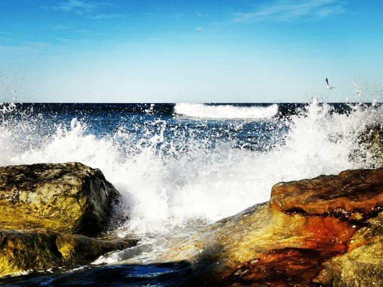 [Reisetagebuch Australien] Heute aus: Bondi Beach