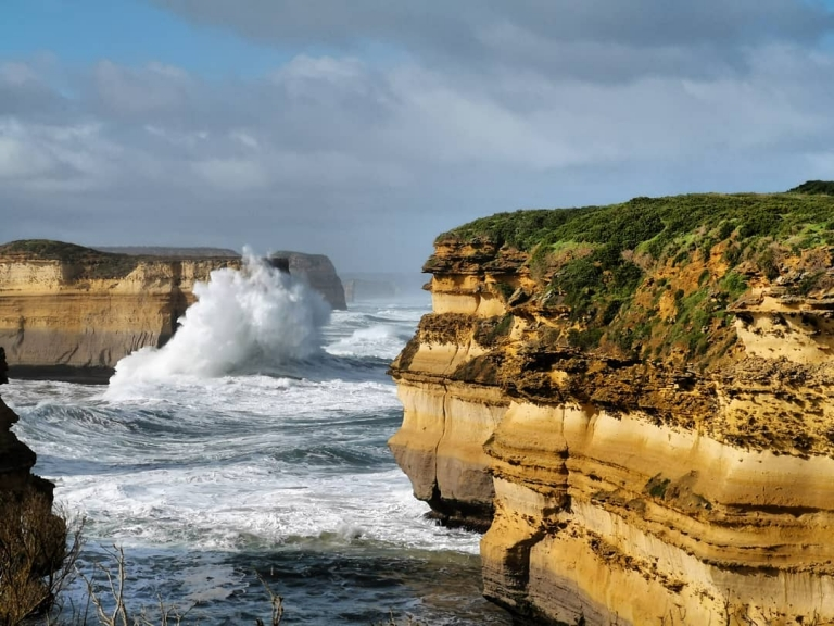 [Reisetagebuch Australien] Heute aus: Mutton Bird Island (ö i Australien, Victoria)