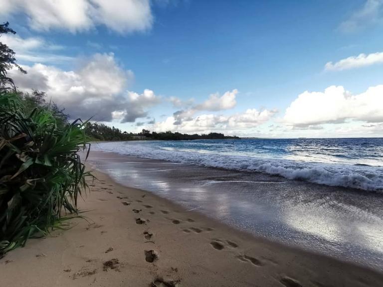 [Reisetagebuch Hawaii] Heute aus: Kaipapa'u Beach