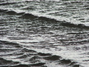 Insel Föhr - nahe Goting Kliff