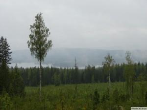 Dalarna/Skuggarvet