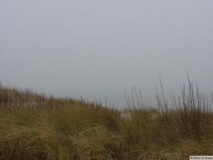 Föhr - nahe Goting Kliff
