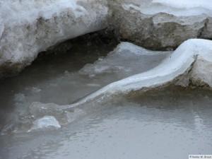 winter_2010_foehrDSC00676