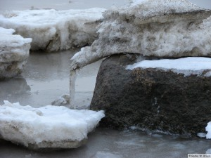 winter_2010_foehrDSC00678