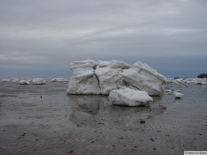 winter_2010_foehrDSC00743