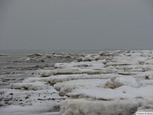 winter_2010_foehrDSC00801