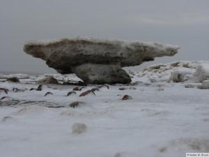 winter_2010_foehrDSC00832