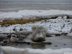 winter_2010_foehrDSC00864