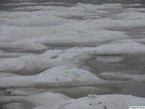 winter_2010_foehrDSC00884