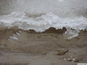 winter_2010_foehrDSC01115